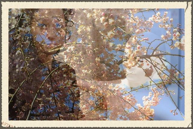 EARTH_postcard_Japan.jpg