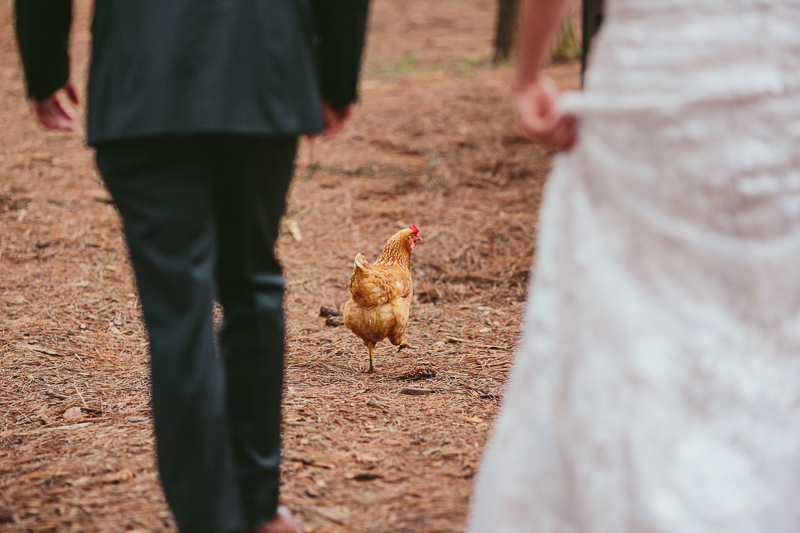 epic_serenbe_farm_wedding_atlanta_027.jpg