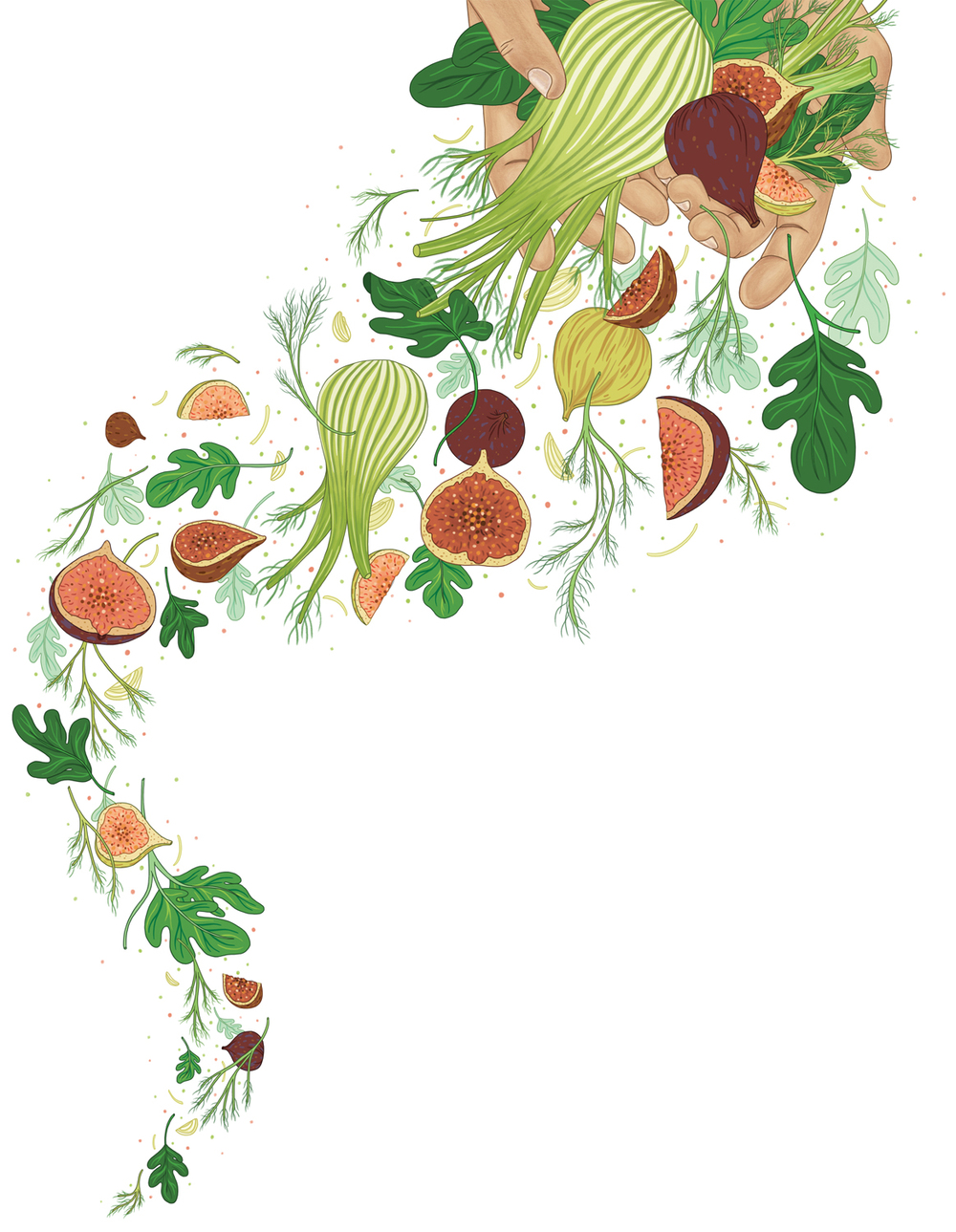 Fennel-and-Figs-300dpi.jpg