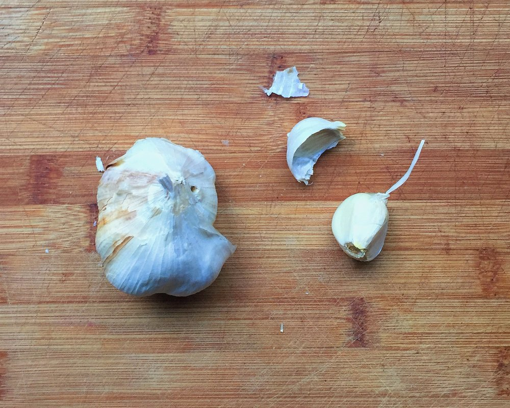 Fist of garlic bunch