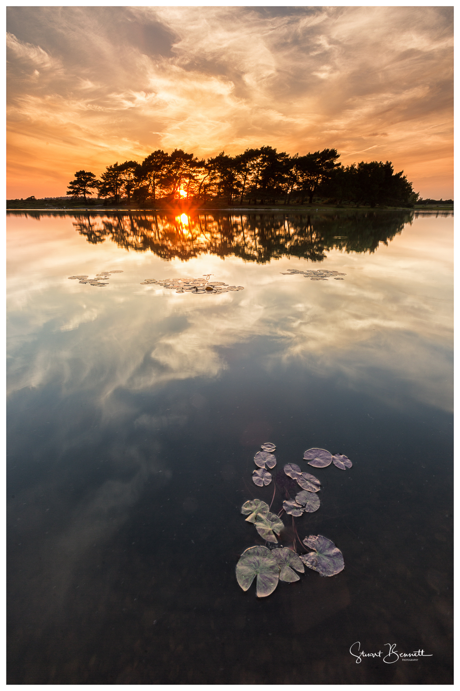 Hatchet Pond Sunset-3.JPG
