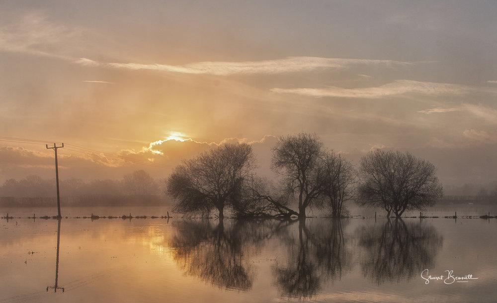 Ringwood Sunrise III.JPG