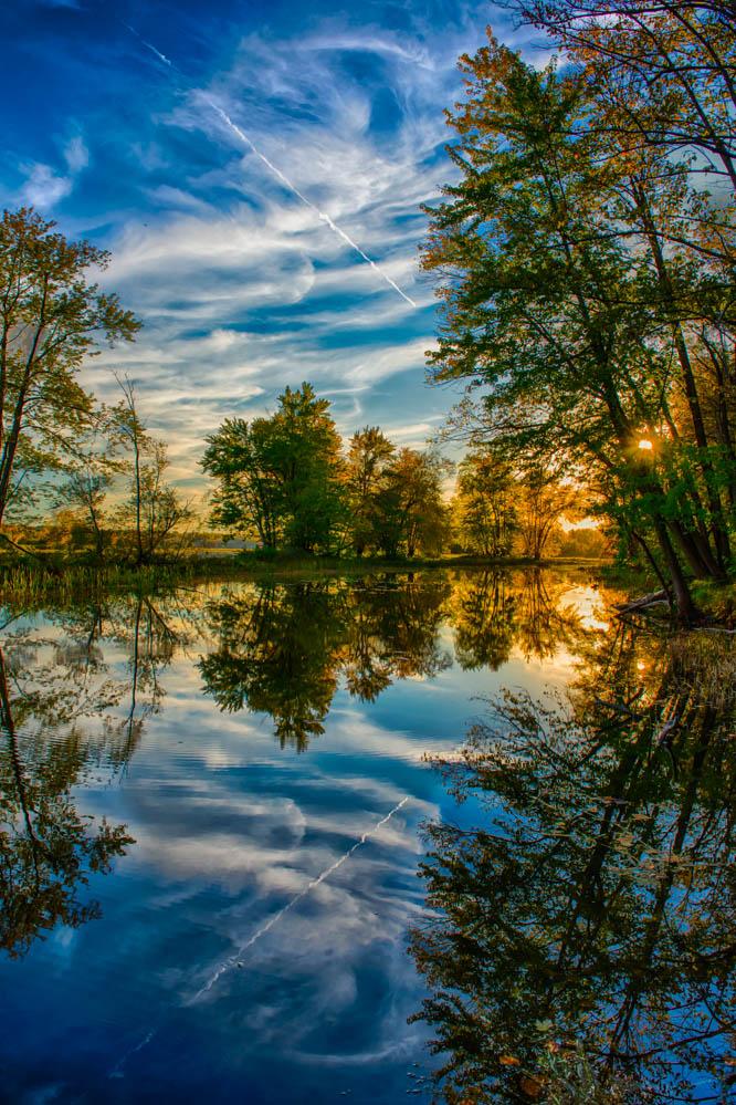 Petrie-Island-Reflections-1.jpg