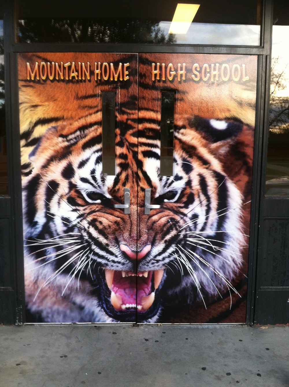 School Door wrap Tiger design