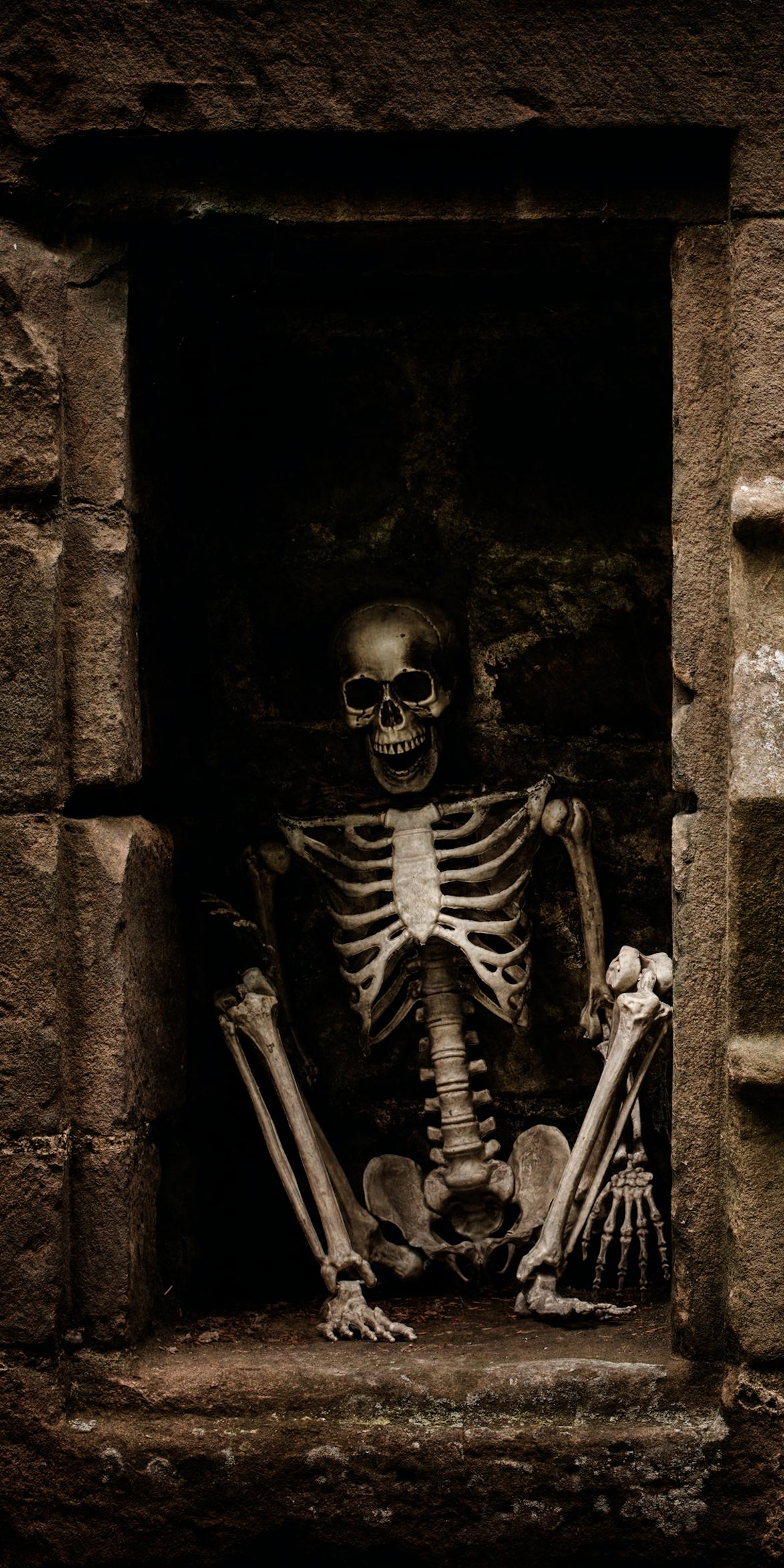 Halloween Skeleton.Halloween Skeleton Sitting Door Wrap Rm Wraps