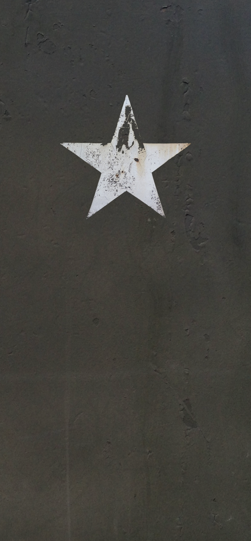 Old army star logo door wrap