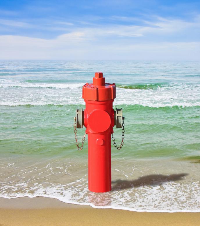 Hydrant at the Seaside Dishwasher Wrap