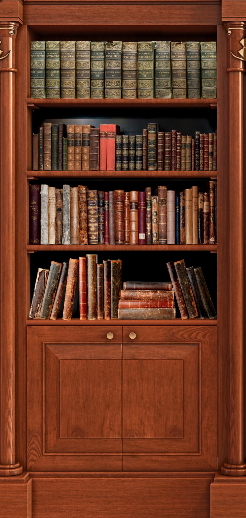 Old Book Shelf 2 Door Wrap Rm Wraps