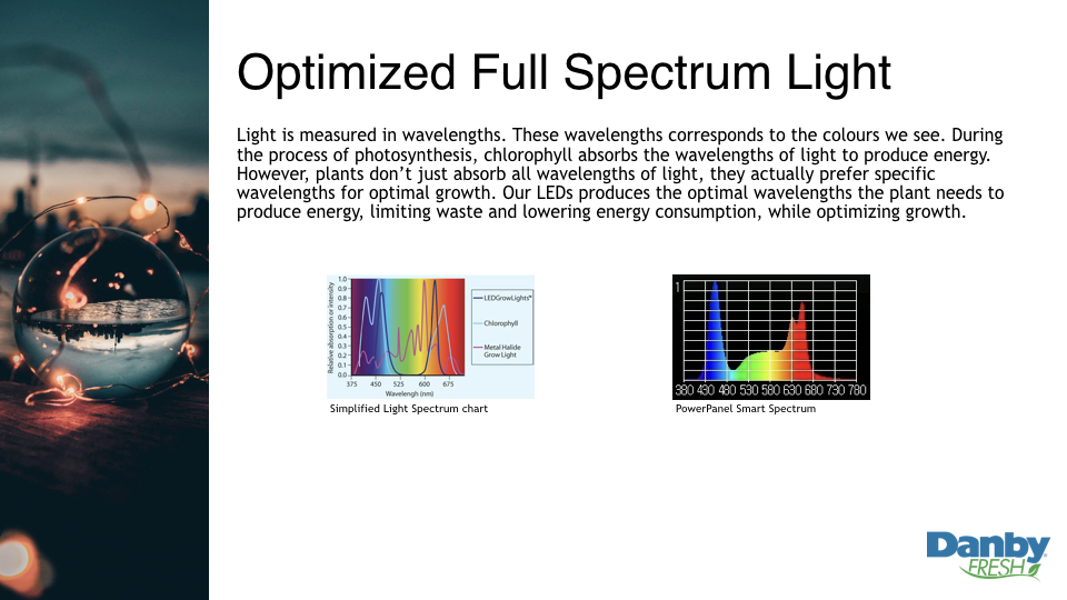 Light is measured in wavelengths. These wavelengths corresponds to the colours we see. During the process of photosynthesis, chlorophyll absorbs the wavelengths of light to produce energy. However, plants don't just absorb all wavelengths of light, they actually prefer specific wavelengths for optimal growth. Our LEDs produces the optimal wavelengths the plant needs to produce energy, limiting waste and lowering energy consumption, while optimizing growth.