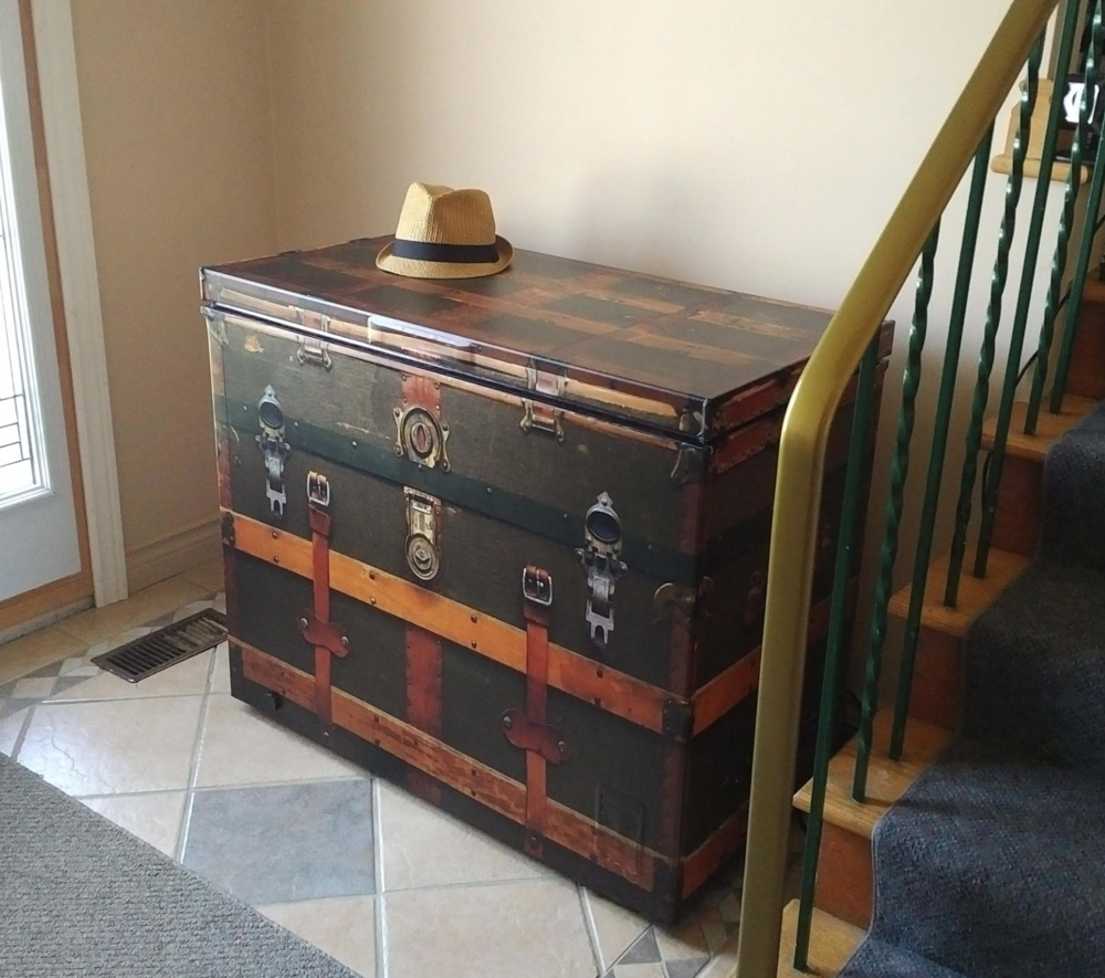 Vintage Trunk Chest Freezer Wrap