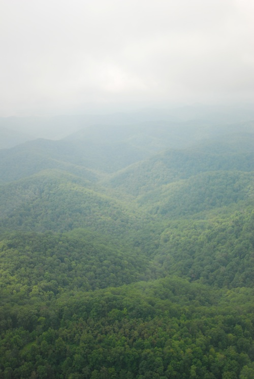 Kentucky1.jpg