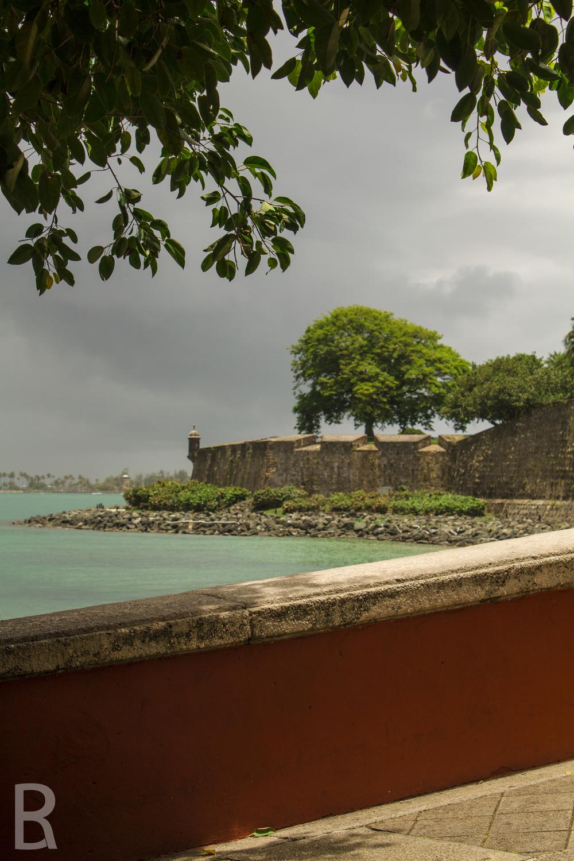 SITE-Puerto Rico-53.jpg