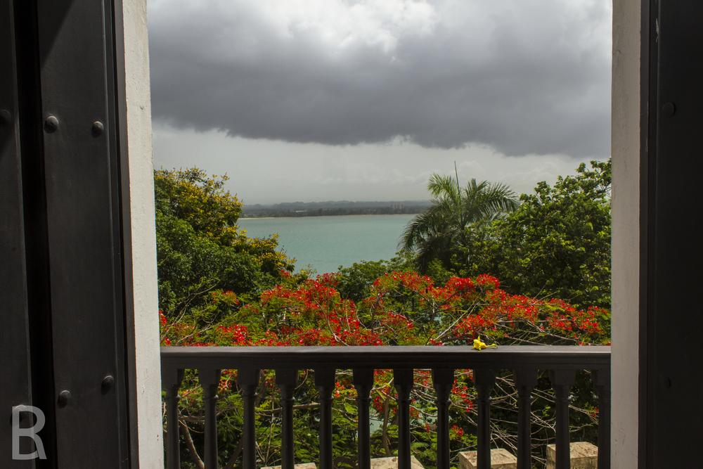 SITE-Puerto Rico-56.jpg
