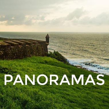 PANOS ICON.jpg