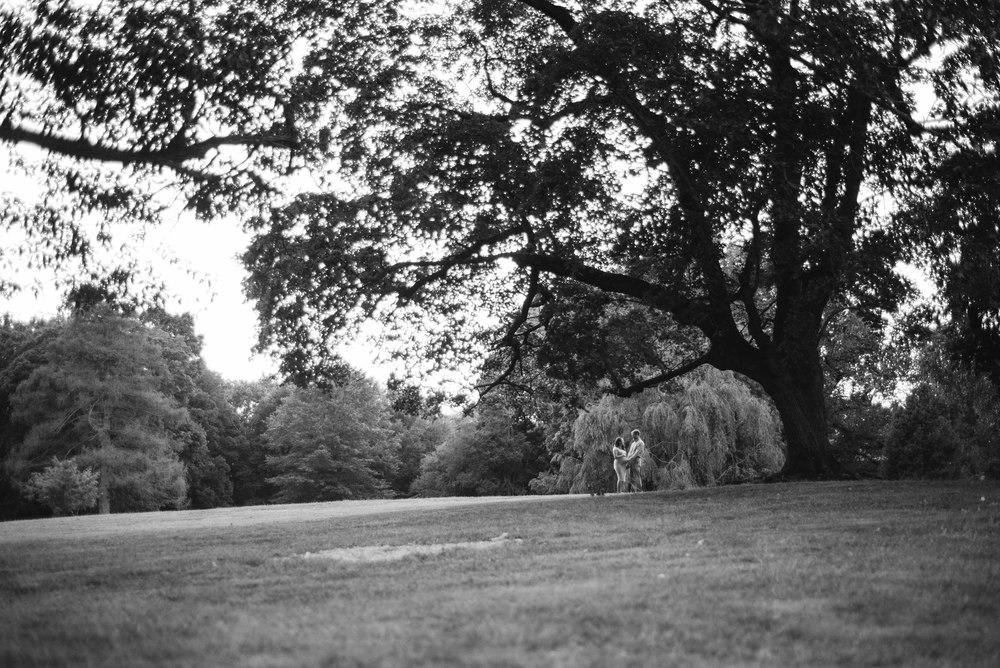 curtis_arboretum-1771.jpg