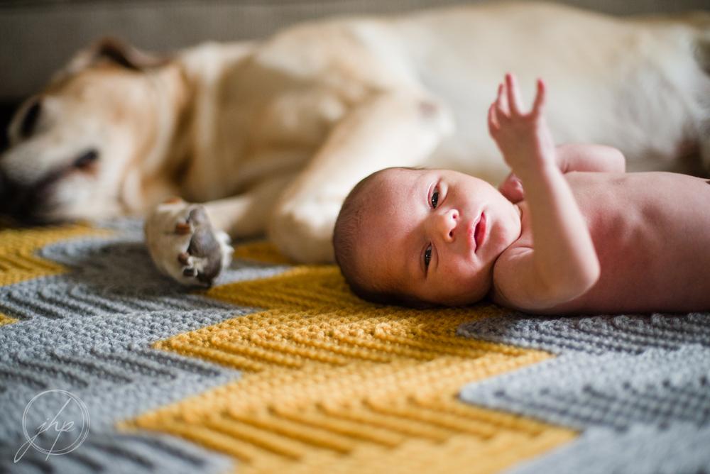 Leonard_newborn-3538.jpg