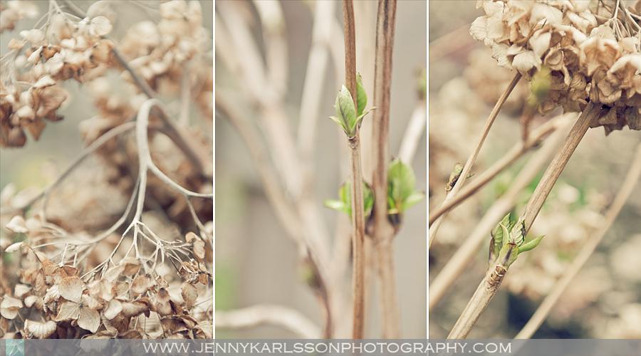 spring-b