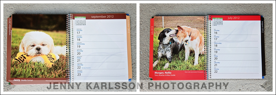 Our Best Friends Calendar 2012 - Western PA Humane Society