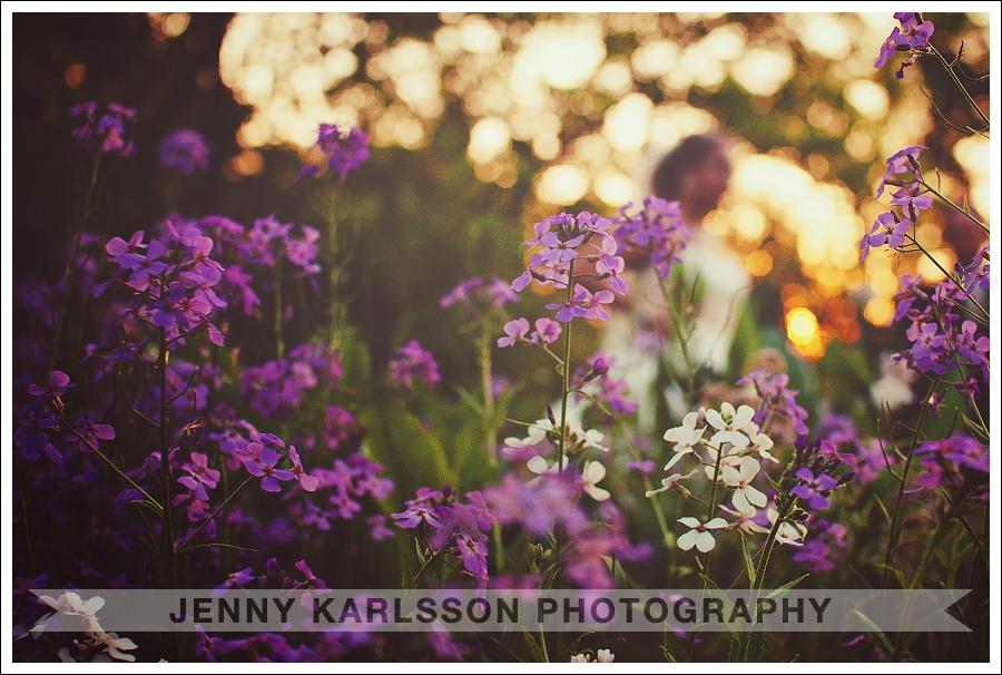 Bride in Fields of Flowers at Sunset Ligonier Country Inn Wedding