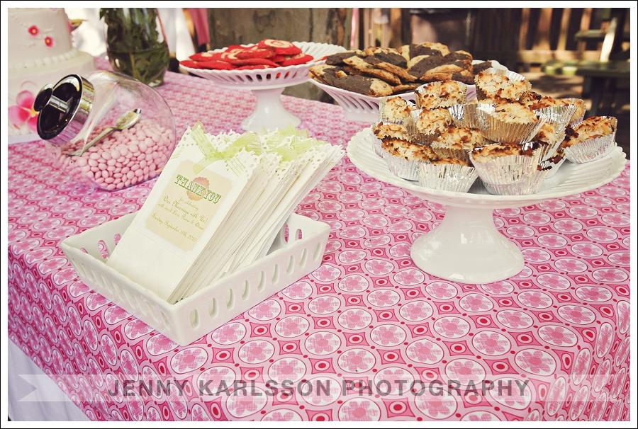 Kennywood Park Wedding Photography 010