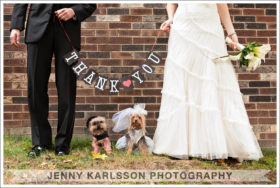 Pittsburgh Wedding Photographer Dogs 001
