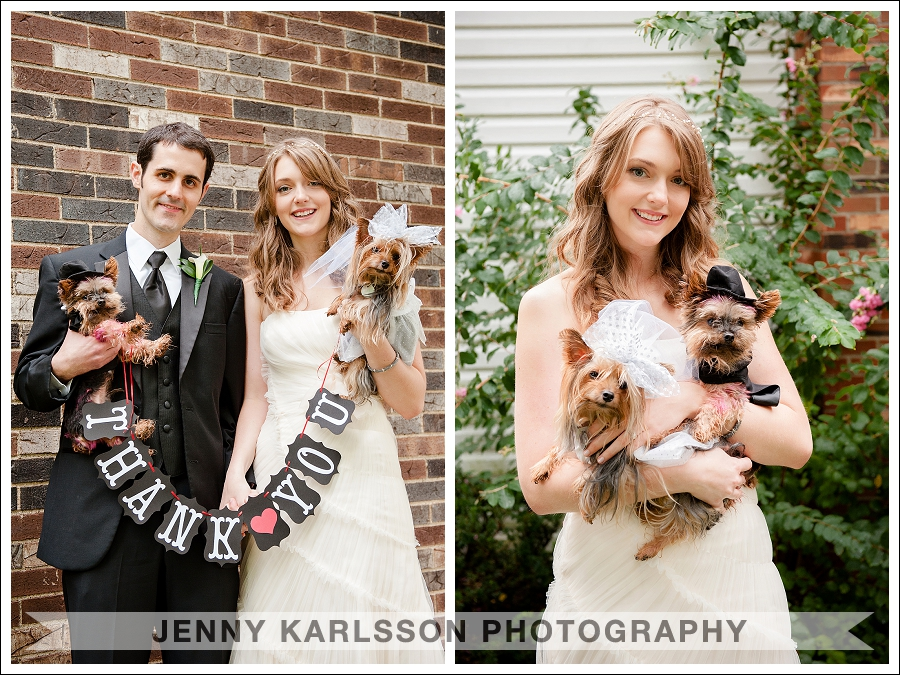Pittsburgh Wedding Photographer Dogs 002