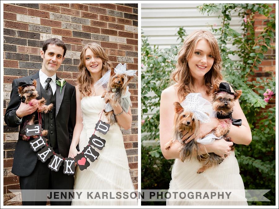 Pittsburgh Wedding Photographer Dogs 002