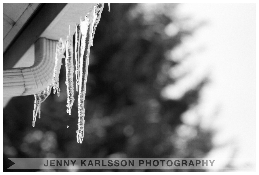 Pittsburgh film photography | Icicles