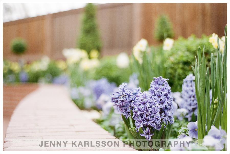 The Secret Garden at Phipps