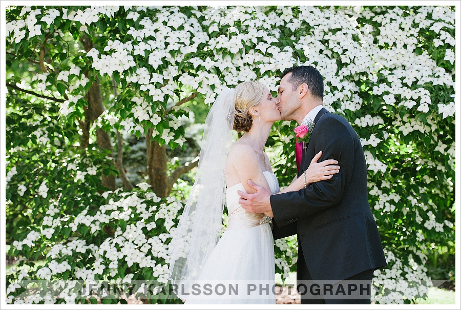 Phipps Wedding Photographer