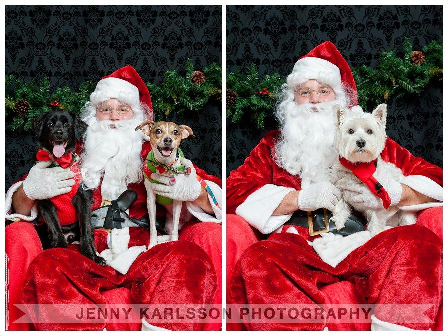 Pet Photos with Santa Pittsburgh
