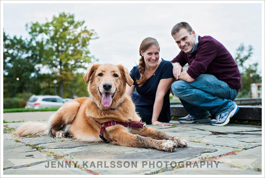 Pittsburgh Pet Photography - Ward