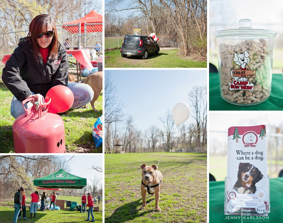 camp bow wow egg hunt006