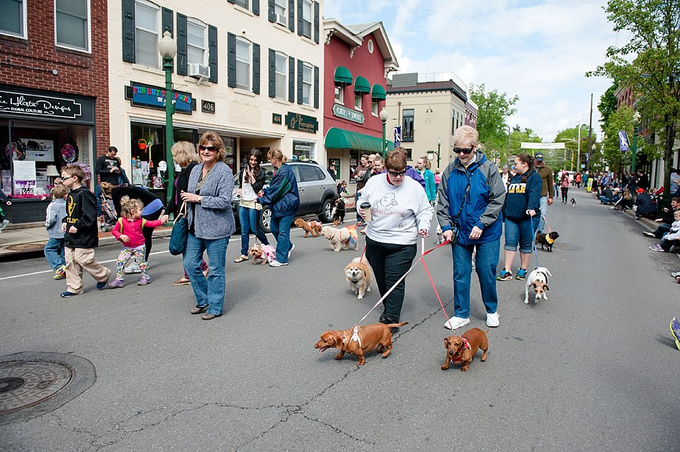 pet parade in sewickley