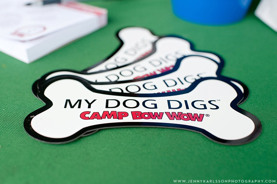 camp bow wow pittsburgh 002