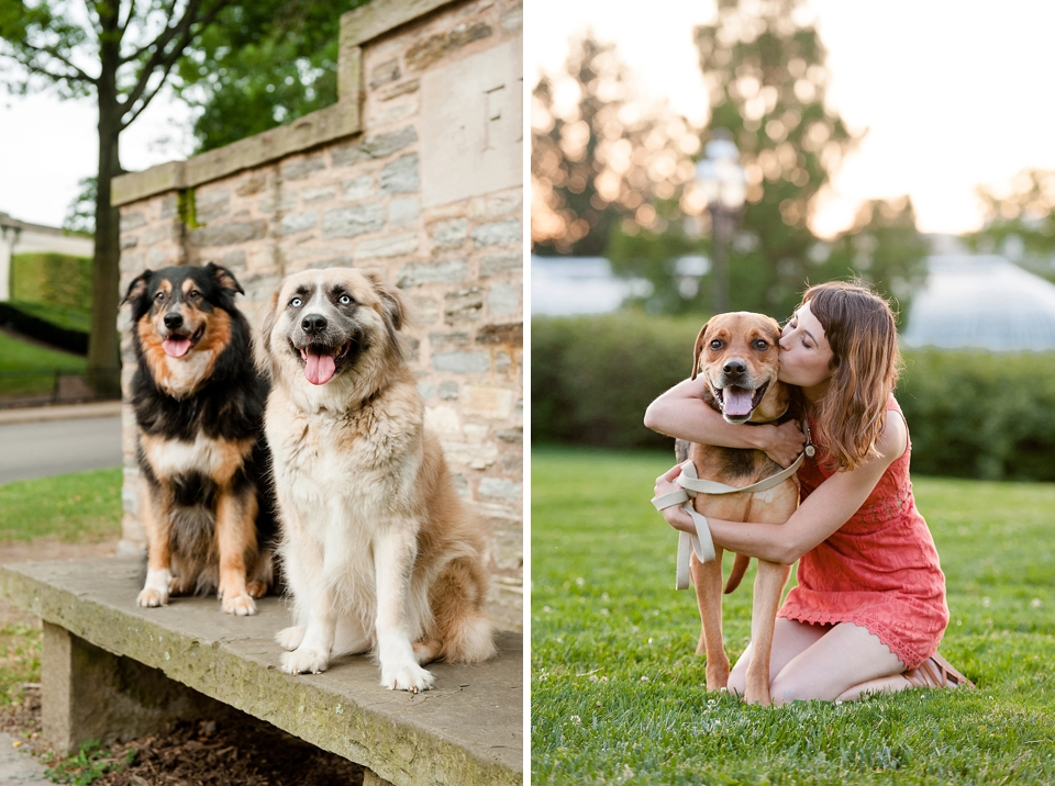 Best Pittsburgh Pet Photographers 013