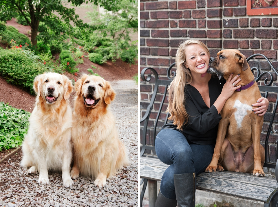 Best Pittsburgh Pet Photographers 026