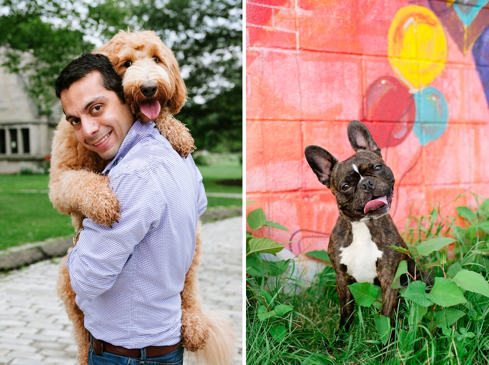 Best Pittsburgh Pet Photographers 027