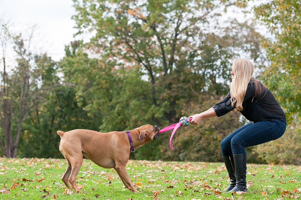 Best Pittsburgh Pet Photographers 065