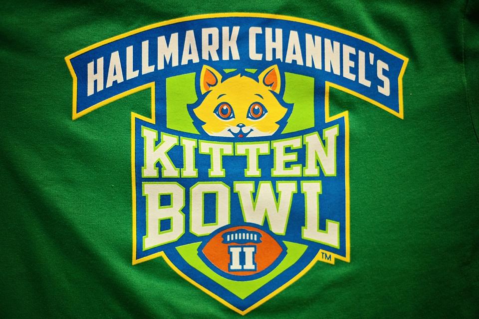 Kitten Bowl WPHS 005