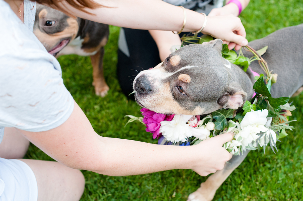 Stephanie Kirby, the owner of The Blue Daisy Floral Designs, helping Bailey with her floral wreath.