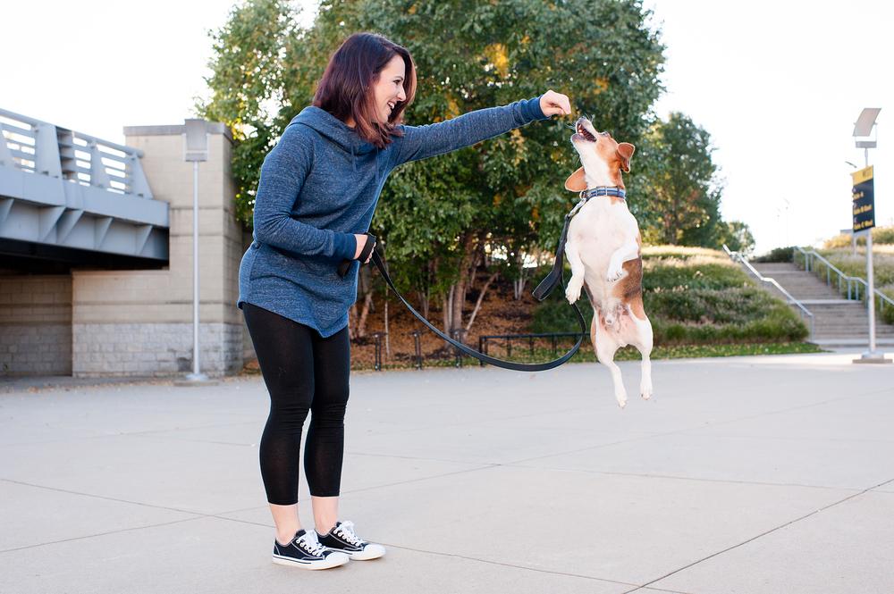 Leap Day Dog Photography Jenny Karlsson 014.jpg