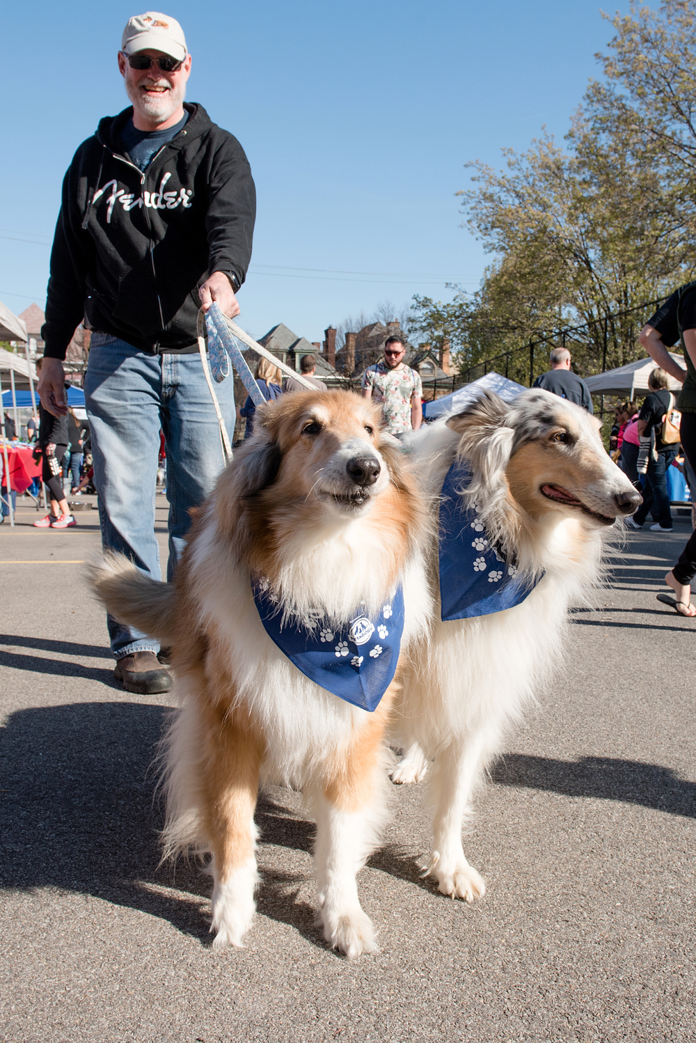 Bark Shadyside Pup Walk Pittsburgh 2016 012.jpg