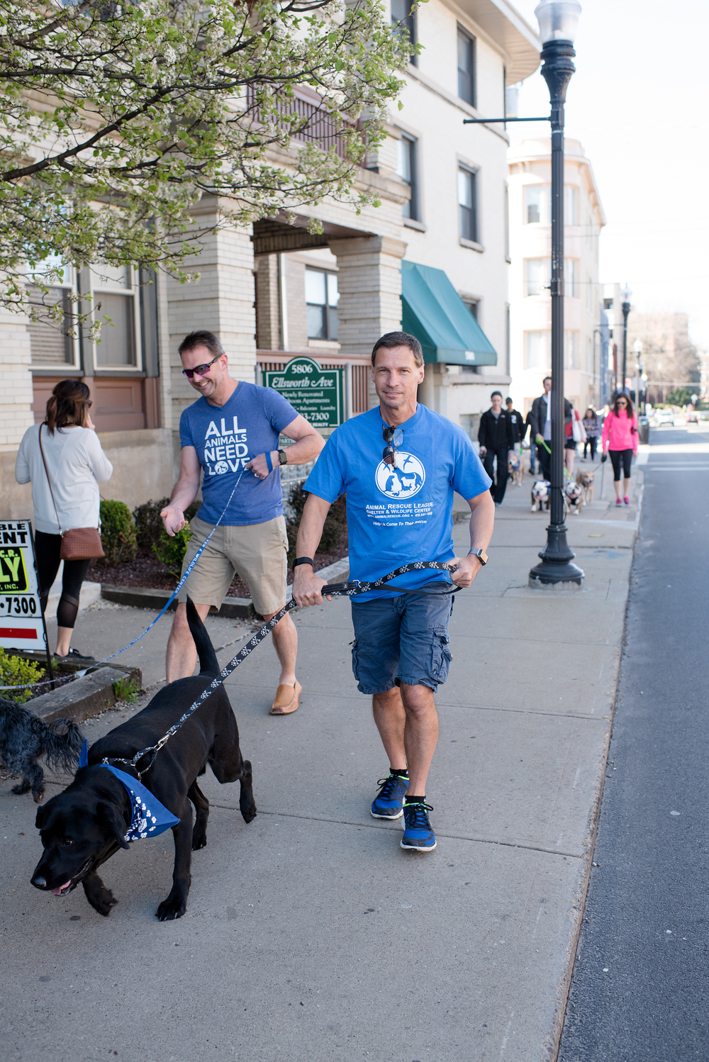 Bark Shadyside Pup Walk Pittsburgh 2016 061.jpg