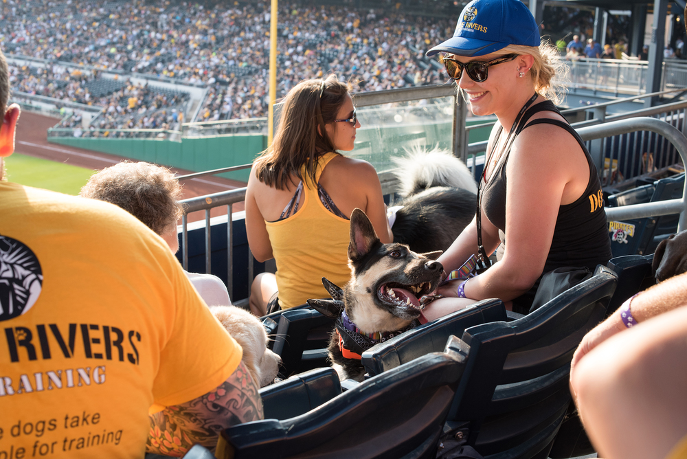 Pup Night at PNC Park-6.jpg