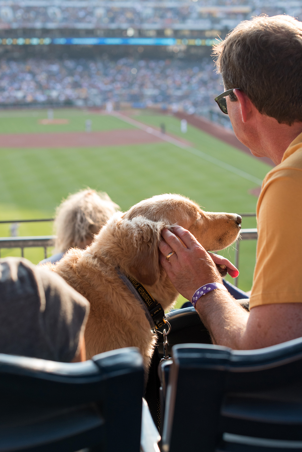 Pup Night at PNC Park-15.jpg