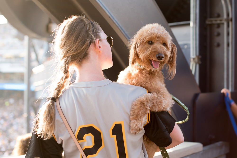 Pup Night at PNC Park-22.jpg