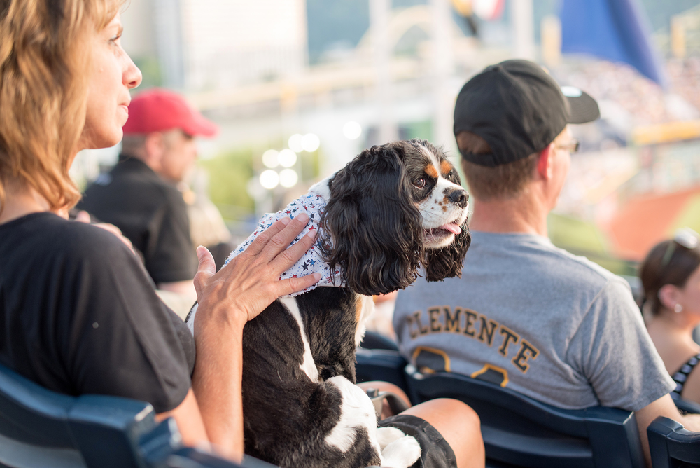 Pup Night at PNC Park-49.jpg