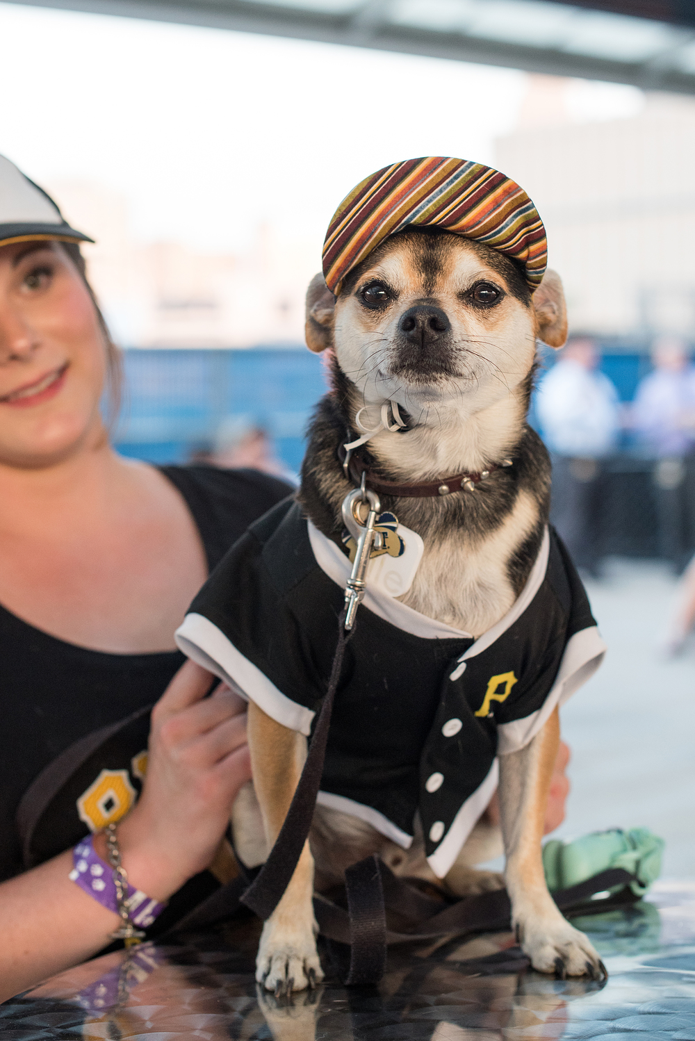 Pup Night at PNC Park-69.jpg
