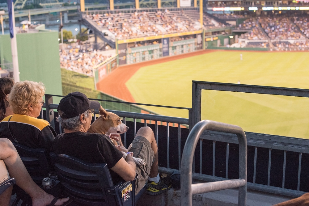 Pup Night at PNC Park-84.jpg